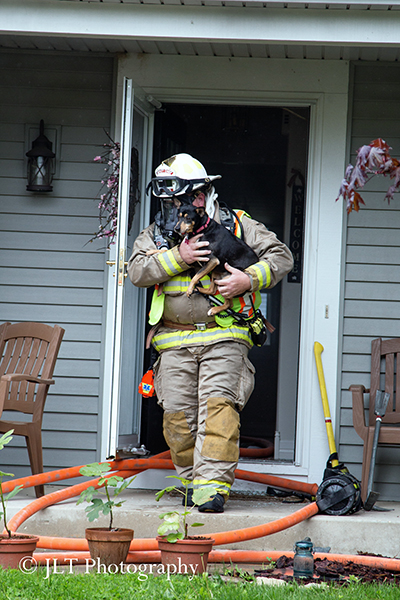 fireman carries dog out of a house