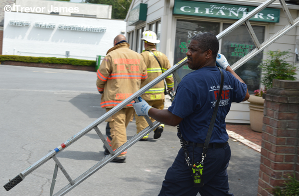 fireman with ladder