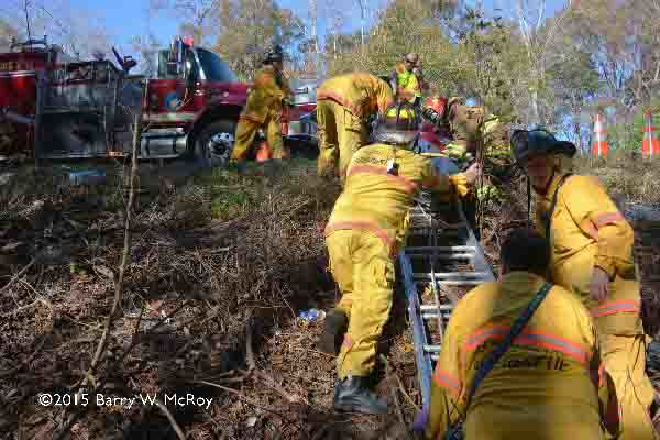firemen use a ladder to get patient up a ravine