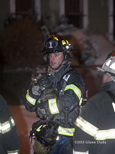 fireman carries family cat from house fire