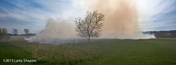 grass fire from flying embers from house fire