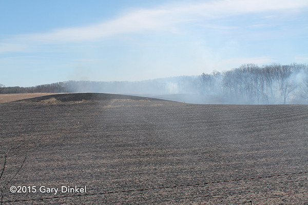 huge field after grass fire