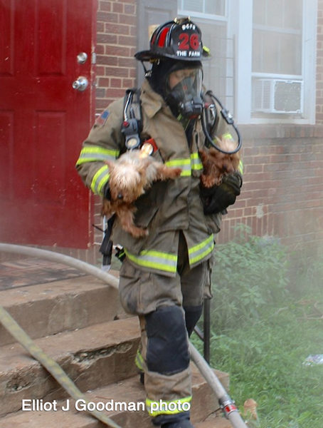 firefighter rescues dog from house fire