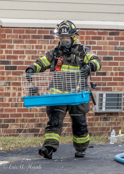 Firefighter carrying pet cage